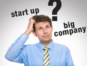 Startup or Big Company