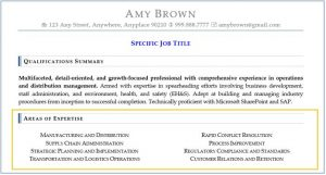 Resume Sections - Areas of Expertise is right below the Summary